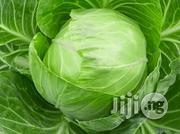 Cabbage Vegetables Organic Agricultural Farm Produce   Meals & Drinks for sale in Plateau State, Jos