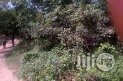 10,000 Acres Farmland For Sale | Land & Plots for Rent for sale in Oyo State, Iseyin