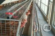 Very Strong Fibrecated Battery Cages For Sell | Farm Machinery & Equipment for sale in Kwara State, Ilorin East